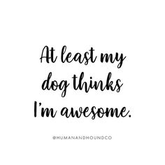 But he's also deaf, partially blind and senile so? But he's also deaf, partially blind and senile so? Dog Best Friend Quotes, Best Quotes, I Love Dogs, Puppy Love, Partially Blind, Jiff Pom, Dog Anatomy, Dog Signs, Funny Dogs
