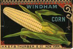 Images For > Vintage Canned Food Labels