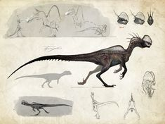 :Neurotenic+Dilophosaurus:+by+Tapwing.deviantart.com+on+@DeviantArt