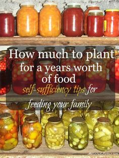 Learn how much you need to plant in order to have enough food to feed your family for a year. Great info to know for lowering your food bill and becoming more self-sufficient. Grab this now to know how much to put in of each plant, plus tips on which vege Homestead Gardens, Farm Gardens, Cottage Gardens, Permaculture, Organic Gardening, Gardening Tips, Vegetable Gardening, Veggie Gardens, Texas Gardening