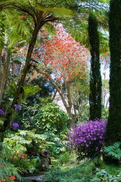 De wonderschone Giardini La Mortella (Russell Page) in Italië