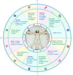 Os signos e a sua relação com as diferentes partes do corpo