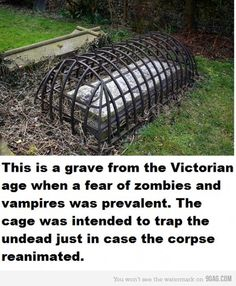 This is how I want to be buried - keep the damn rabbits out and the hooligans away!