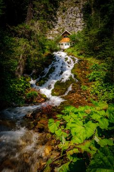 Waterfall 7 Springs