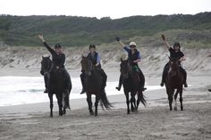 The joy of free riding on the beach with good friends
