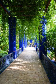 Le jardin Majorelle, Marrakech   - Explore the World with Travel Nerd Nici, one Country at a Time. http://TravelNerdNici.com