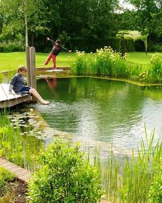 You can use your backyard pond for spending quality family time and have evening tea. The good thing about the backyard pond is that gurgling waterfalls are very much attractive and appealing. So if you havent decided on having a pond you must do it now. Swimming Pool Pond, Natural Swimming Ponds, Natural Pond, Ponds Backyard, Backyard Ideas, Dream Pools, Cool Pools, Pool Designs, Outdoor Pool
