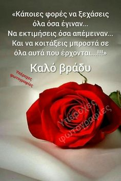 Unique Quotes, Best Quotes, Greek Words, Greek Quotes, Good Night, Sayings, Beautiful, Best Quotes Ever, Have A Good Night