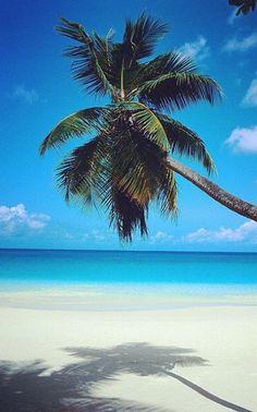 Heavenly Mauritius (http://www.facebook.com/BeautyOfMauritius)