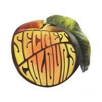"""""""Blackbird (Only One)"""" by Secret Colours. Secret Colours have announced the release of their sophomore album, Peach, on May 28th. The Psych-pop band has released the album's first single """"Blackbird (Only One)"""". (deli)"""