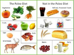 paleo diet what to eat and what is it?