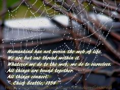 Native American, #Wisdom, #Quote #words