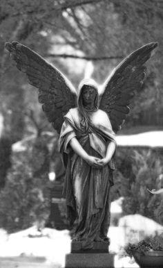 "Képtalálat a következőre: ""cemetery angel"" Cemetery Angels, Cemetery Statues, Cemetery Art, Angel Statues, Angels Among Us, Angels And Demons, Old Cemeteries, Graveyards, Canvas Art"
