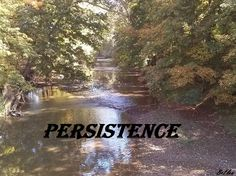 Think and Grow Rich for Women-Persistence (chapter 8)  http://www.brianandfeliciawhite.com/think-and-grow-rich-for-women-persistence/