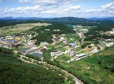 paju city s. korea