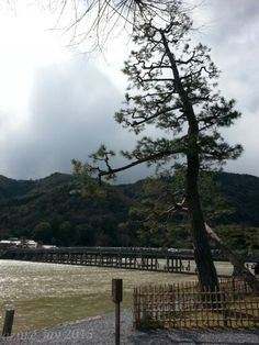arashiyama. kyoto