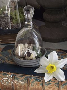 Charming!  http://cat-arzyna.blogspot.it/2012/03/wielkanocne-dekoracje.html
