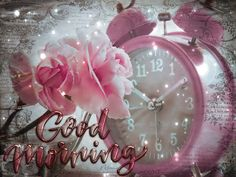 Good Morning Gift, Tuesday Quotes Good Morning, Good Morning Coffee Gif, Good Morning Motivation, Good Morning My Friend, Good Morning World, Good Morning Picture, Good Morning Greetings, Good Morning Sunday Images