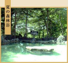 ニセコ温泉 ホテルいこいの村、露天風呂は、かけ流しかも? Hokkaido Japan