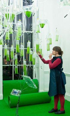 H.O.R.T.U.S., la nuova mostra dello studio londinese EcoLogic (Claudia Pasquero e Marco Poletto) all'Architectural Association. Ogni contenitore è fornito di un lungo tubo di plastica trasparente in cui EcoLogic invita a soffiare, per assistere all'ossidazione e alla crescita delle alghe nutrite dall'anidride carbonica del fiato.