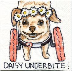 Daisy Underbite! #DaisyWheelsSNS #WagAware #BuyaCharmSaveaDog