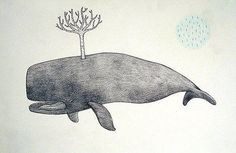 whale with idea