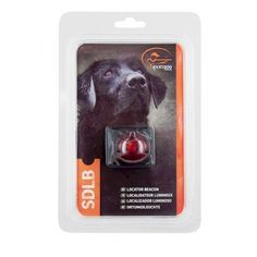 SportDog® Dog Collar LED Light - Locator Beacon - RED - SDLB-RD-E Pet Products, Your Pet, Led, Pet Supplies