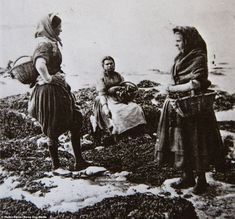 The heroic fisher girls of the Rare Pictures, Rare Photos, Vintage Photos, Cool Photos, Girl Train, Rocky Shore, Local Photographers, Beach Poses, Working Woman