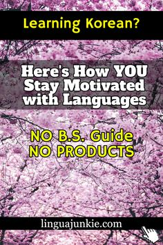 / linguajunkie.com / Learning Korean? / NO B.S. Guide NO PRODUCTS / Here's How YOU Stay Motivated with Languages Korean Phrases, Learn Korean, Korean Language, How To Stay Motivated, Languages, Let It Be, Motivation, Learning, Products