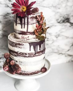 Even though it feels more like winter I couldn't help but hold on to everything fall with these colors🍂🍁 Fall Wedding Cakes, Fall Flowers, Dessert Table, Panna Cotta, Burgundy, Ethnic Recipes, Desserts, Cupcake, Chelsea