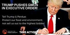 DEMAND Trump & Secretary of Agriculture Perdue PROTECT our food and environment, not sell us out to the highest bidder!  Please Sign & Share Widely in OUTRAGE!