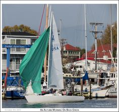 The crew of a J/22 One Design works to secure the spinnaker or mainsail as they pass the Eastport Yacht Yard on Back Creek in Annapolis Maryland. Photograph published on October 18th 2015. To see a full size version of this photograph and the Annapolis Experience Blog article click on the Visit Site button. Image and article Copyright © 2015 G J Gibson Photography LLC.