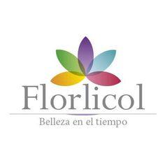 Rose, Flowers, Skype, Honduras, Salvador, Ecuador, Fresco, Puerto Rico, Html