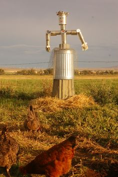 Blissfully Content: Meet Gertrude...Our Tin Can Scarecrow