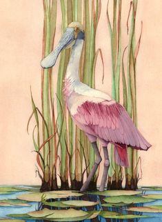 1 - Roseate Spoonbill by Gene Rizzo Giclee Prints ~ x x Art Tutorials Watercolor, Birds Painting, Art Painting, Animal Art, Bird Artwork, Animal Paintings, African Art Paintings, Watercolor Bird, Bird Art