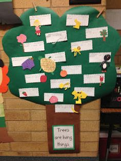 Living and Non-Living. Make a living thing from construction paper. Write what makes it a living thing & what it needs.   What a cute display!