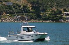 Cape Town Fishing Charters are the experts on Yellow fin tuna.if you want a yellow fin, speak to these guys Tuna Fishing, Great Websites, Fishing Charters, Places Of Interest, Cape Town, Boat, Guys, Yellow, Dinghy