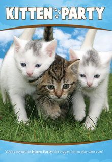 Kitten Party (2010)