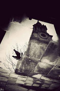 Gavin Hammond London Lomography (10 Pics)