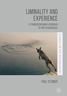 EBook Liminality and Experience: A Transdisciplinary Approach to the Psychosocial (Studies in the Psychosocial) Author Paul Stenner, Got Books, Books To Read, Ann Oakley, Michael Rapaport, George St Pierre, David Cameron, What To Read, Social Science, Book Photography