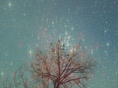 Alone by Agim Balaj