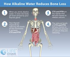 Benefits of Alkaline Water for Bone Health http://holymedwater.com visit us for Radical Health E-Course
