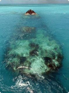 in Paradise: Diving Bermuda's Gorgeous Shipwrecks : The Scuttlefish Olympic Diving, Scuba Diving Equipment, Beneath The Sea, Military Pictures, Shipwreck, Royal Navy, Cruise Vacation, Staycation, Snorkeling