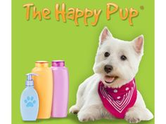 $ 8 Off Grooming Services $ 20 & Up!