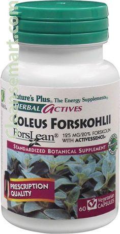 nature's plus forskohlii | coleus forskohlii thyroid | coleus forsk