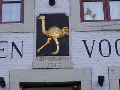 Gevelsteen van de ouden vogelstruys Vrijthof 'de hoeskamer' vaan mestreech Maastricht
