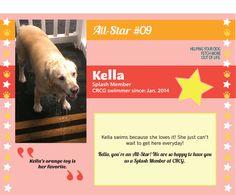 Meet CRCG Club FETCH All Star, Kella!! Kella's orange toy is her favorite.