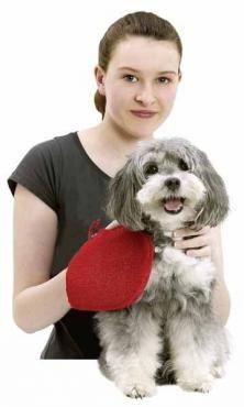 Ръкавица за събиране на косми Karlie Perfect Care grooming glove