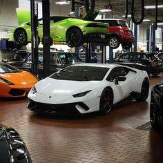 2018 lamborghini huracan performante white. Wonderful Performante Lamborghini Huracan Novara  Car Inspiration Pinterest Huracan  And Huracan Intended 2018 Lamborghini Performante White