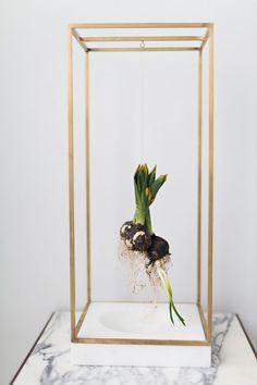 Suspension pour plantes par Sunday suppers